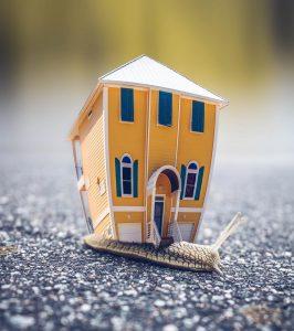 maison de plain pied